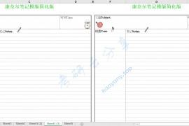 康奈尔笔记模版简化版.xlsx