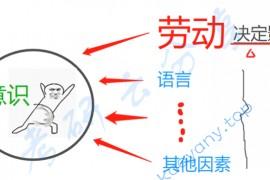 徐涛:强化班笔记马原考点12-意识的起源、本质和作用(重点选择题)