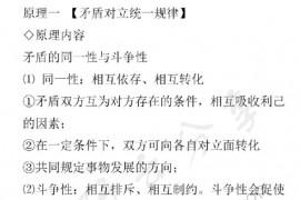 考研政治必背九大哲学原理.pdf